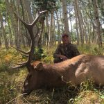 2016 Zach Hampton Elk
